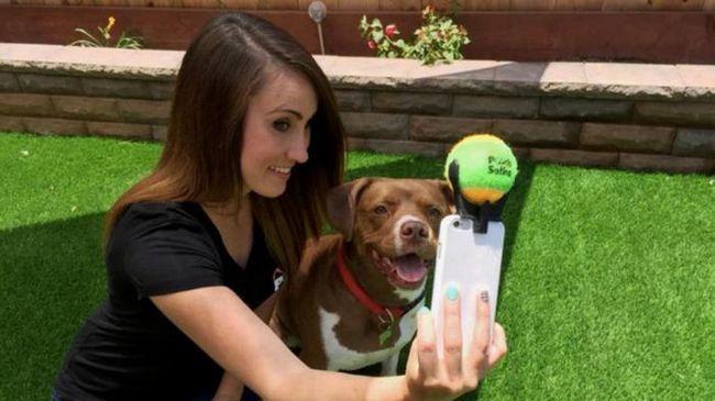 Фото - Цей гаджет допоможе вам зробити ідеальне Селфі зі своїм собакою