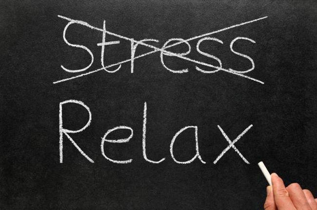 Фото - Як провести відпустку без стресу через роботи?