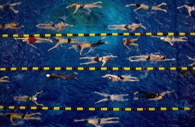 Фото - Топ-6 причин, чому вам слід ходити в секцію з плавання