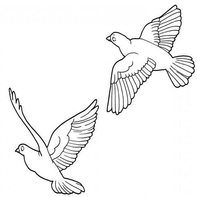 аплікація з паперу шаблони голуб