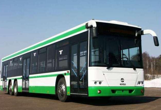 Фото - Автобус ГолАЗ +5251, 6228: технічні характеристики і фото