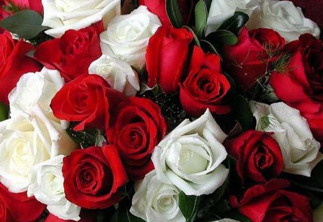 сон білі троянди дарують