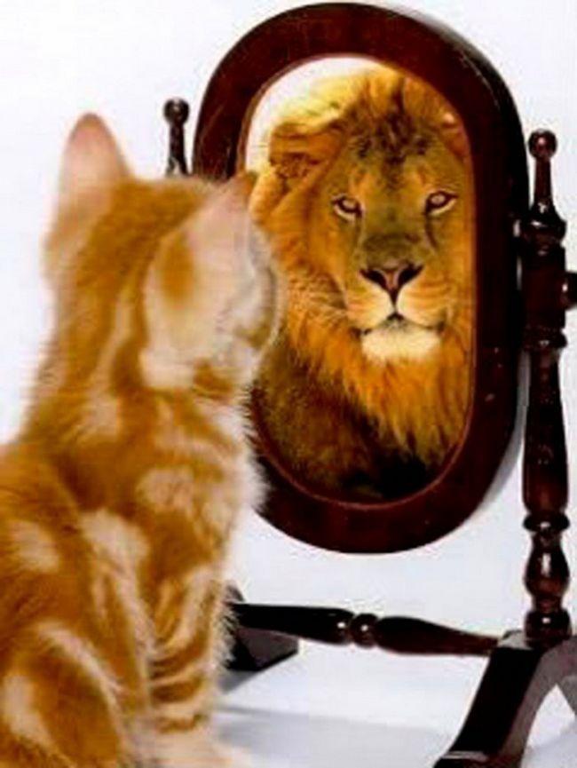 Фото - Будьте вірні собі, будьте ласкаві до себе, або як полюбити себе