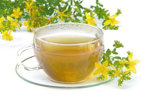 чай із звіробою користь і шкода