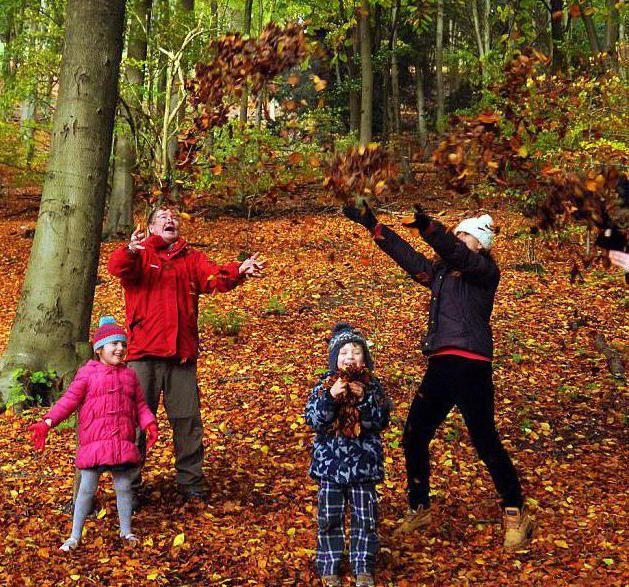 ідеї для фотосесії в лісі