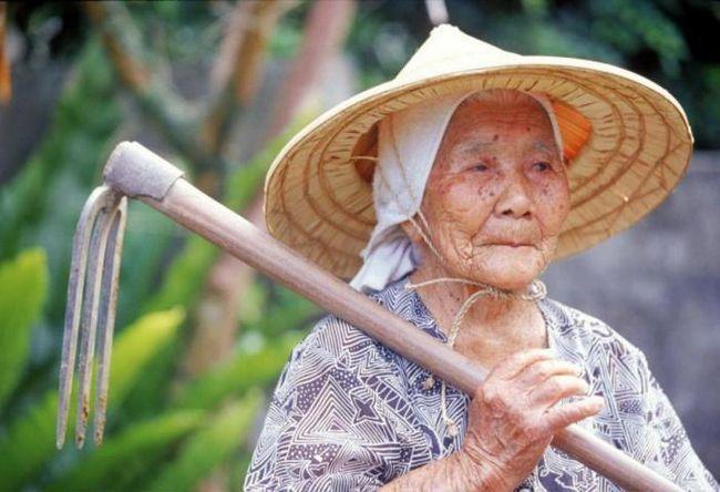 Фото - Як прожити щасливо до 100 років: секрети довгожителів острова окинава