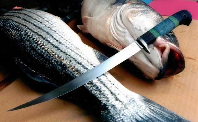Фото - Як вибрати філейний ніж для риби. Якісний ніж для оброблення риби