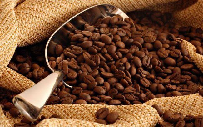 кави різновиди