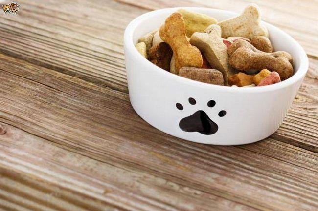 сухий корм Ориджа для собак