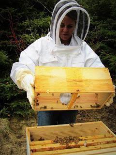 Фото - Годівниця для бджіл своїми руками (фото)