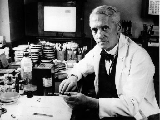 Фото - Хто відкрив пеніцилін? Історія відкриття пеніциліну
