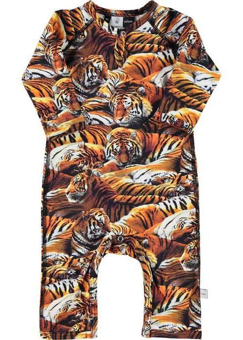 З тиграми