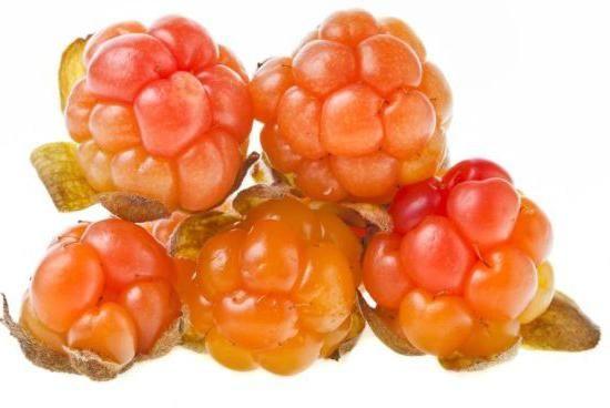 Фото - Морошка мочена. Рецепт заготівлі та використання ягоди в домашній кулінарії.