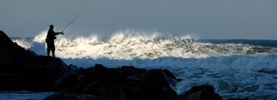 Фото - Морська рибалка: снасті. Особливості риболовлі на море