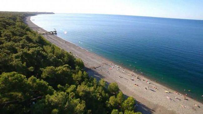Відпочинок в Абхазії в Піцунді