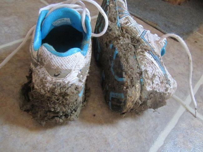 Фото - Огидні хвороби, які ми приносимо в будинок на підошвах взуття