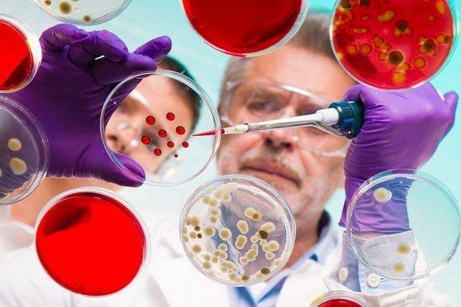 чому необхідно вивчати біологію