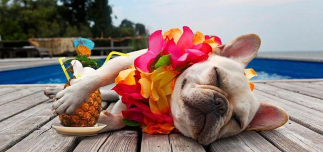 13 причин взяти відпустку прямо зараз