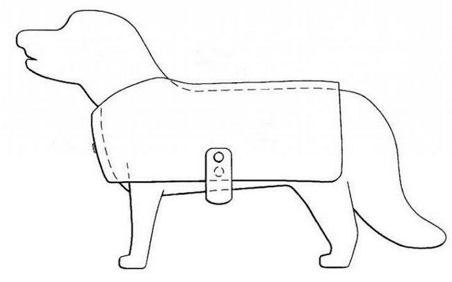 післяопераційна попона для собак