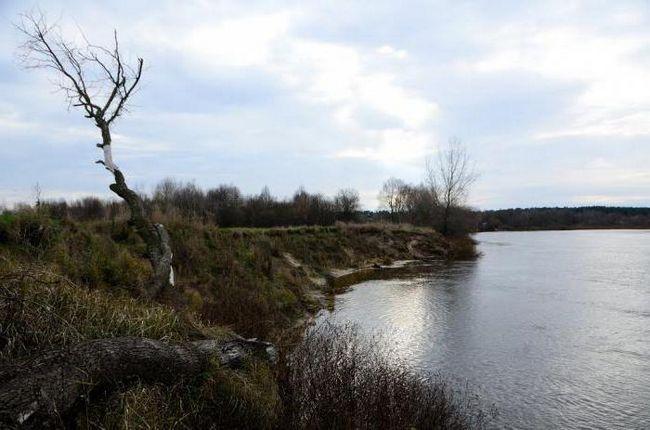 Фото - Річка сож - одна з найкрасивіших річок білорусі