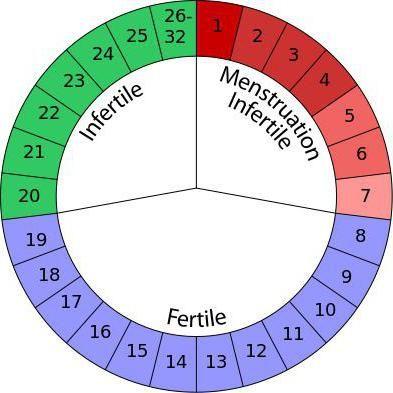 безпечні дні для вагітності розрахувати