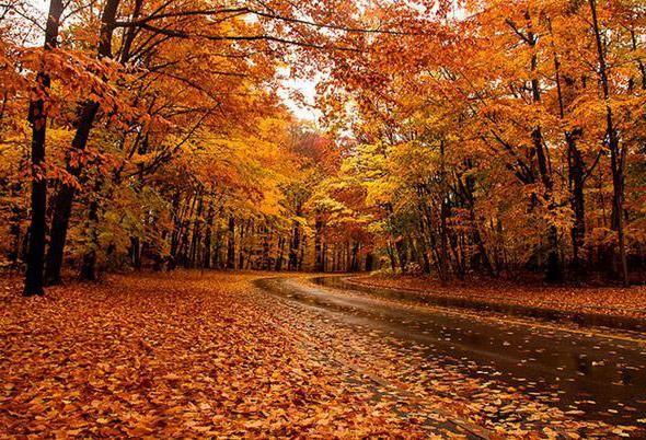 Фото - Вересень: прикмети і традиції