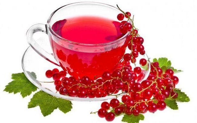 червона смородина користь і шкода для здоров'я