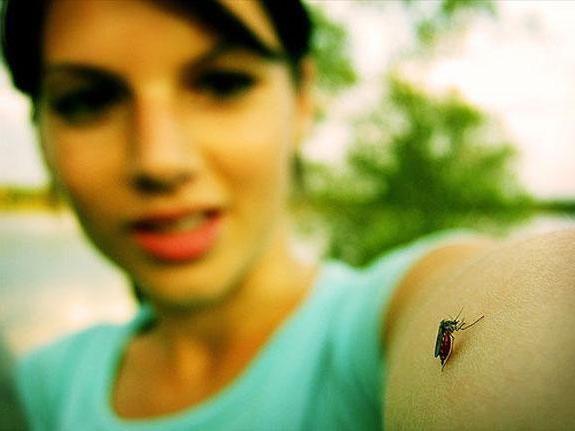 Фото - Засіб від комарів off clip-on: відгуки