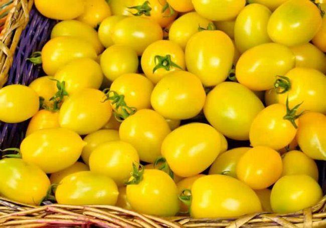 Фото - Жовті помідори на зиму: рецепти