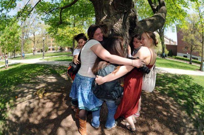 Фото - Жити поблизу дерев: дивовижні переваги для здоров'я