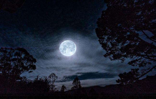Фото - Афанасій Фет: аналіз вірша «Ще травнева ніч»