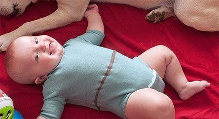 Фото - Боді для новонароджених - «must have» в гардеробі немовляти