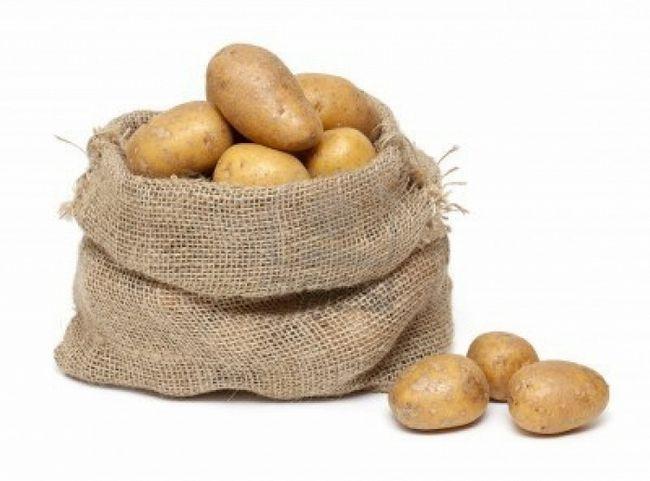 Фото - Як правильно посадити картоплю, повинен знати кожен дачник!