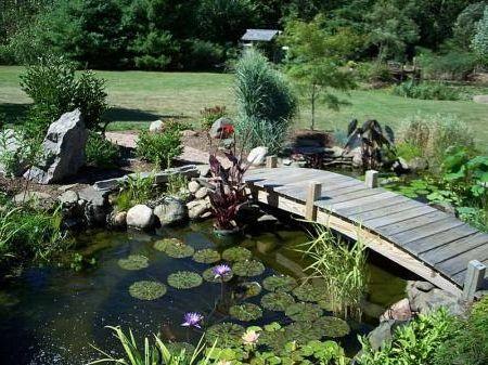 Фото - Як створити декоративна водойма в саду своїми руками