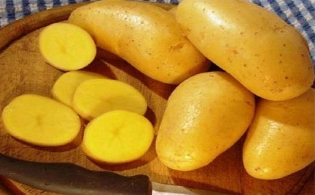 Фото - Посадка картоплі за голландською технологією. Основні правила