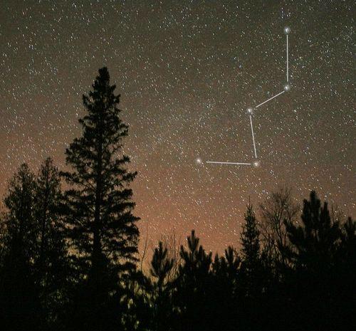найяскравіша зірка північної півкулі