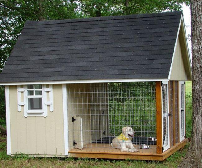 Будки для собак фото