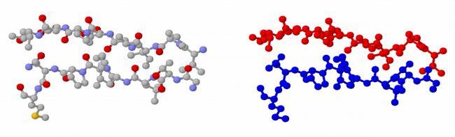 будова молекул вуглеводів