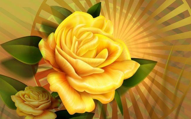 до чого дарують жовті троянди