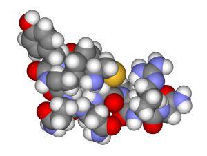 біологічні функції білків