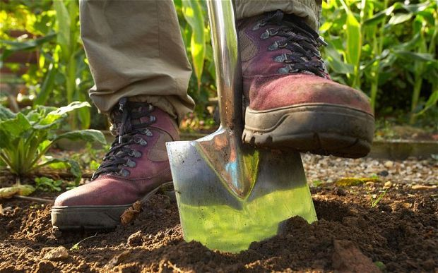 копати землю уві сні лопатою