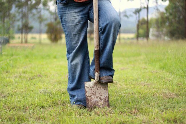 копати город уві сні