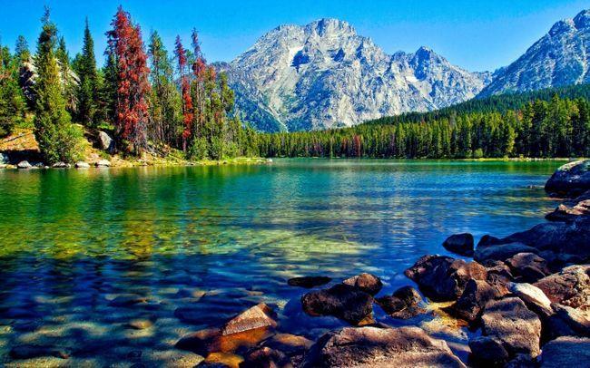 Фото - До чого сниться озеро? До чого сниться купатися в озері?