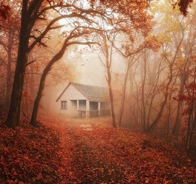 Фото - До чого сниться старий будинок чужий або свій? До чого сниться старий будинок померлої бабусі?